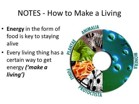 NOTES - How to Make a Living Energy in the form of food is key to staying alive Every living thing has a certain way to get energy ('make a living')