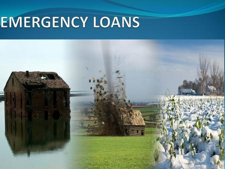 1. 2  FSA provides emergency loans to help producers recover from production and physical losses due to drought, flooding, other natural disasters, or.