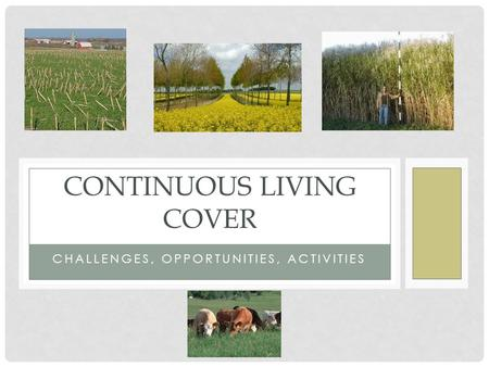 CHALLENGES, OPPORTUNITIES, ACTIVITIES CONTINUOUS LIVING COVER.