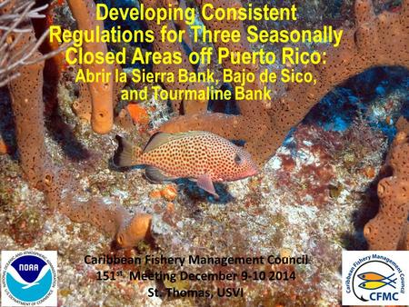 Caribbean Fishery Management Council 151 st Meeting December 9-10 2014 St. Thomas, USVI Developing Consistent Regulations for Three Seasonally Closed Areas.