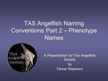 TAS Angelfish Naming Conventions Part 2 – Phenotype Names A Presentation for The Angelfish Society by Tamar Stephens.