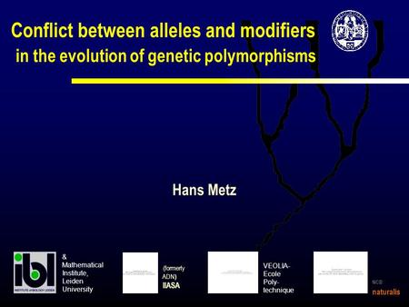 Conflict between alleles and modifiers in the evolution of genetic polymorphisms (formerly ADN ) IIASA Hans Metz VEOLIA- Ecole Poly- technique & Mathematical.