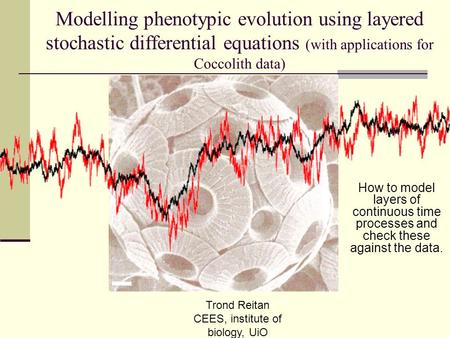 Modelling phenotypic evolution using layered stochastic differential equations (with applications for Coccolith data) How to model layers of continuous.