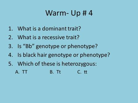 "Warm- Up # 4 1.What is a dominant trait? 2.What is a recessive trait? 3.Is ""Bb"" genotype or phenotype? 4.Is black hair genotype or phenotype? 5.Which of."