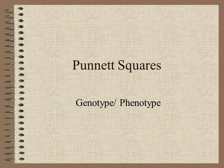 Punnett Squares Genotype/ Phenotype. Punnett Squares Genetics and Probability Note: Probability: is the possibility, or likelihood something will occur.