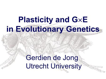 Plasticity and G  E in Evolutionary Genetics Gerdien de Jong Utrecht University.