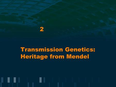 Transmission Genetics: Heritage from Mendel 2. Mendel's Genetics Experimental tool: garden pea Outcome of genetic cross is independent of whether the.