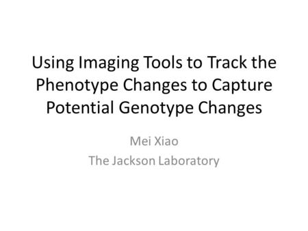 Using Imaging Tools to Track the Phenotype Changes to Capture Potential Genotype Changes Mei Xiao The Jackson Laboratory.
