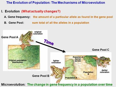 The Evolution of Population: The Mechanisms of Microevolution