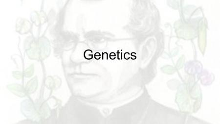 Genetics. Breaking Down the Definitions 1.Genetics 2.Heredity 3.Trait 4.Pollinations 5.Self-pollination 6.Cross-pollination 7.True-bleeding 8.P generation.
