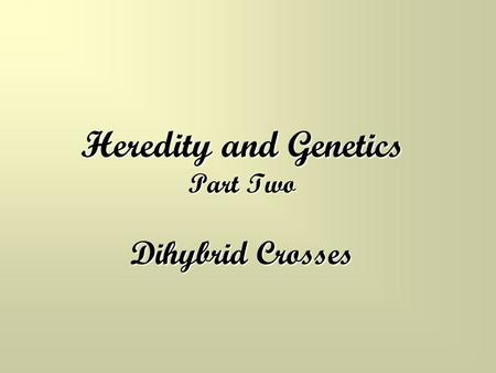 Heredity and Genetics Part Two Dihybrid Crosses. Review of Monohybrid Crosses Remember, monohybrid crosses involve only ONE trait Practice… In fruit flies,