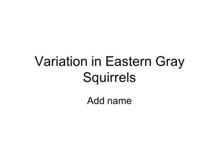 Variation in Eastern Gray Squirrels Add name. Background Information Natural environmental pressures Human influences on squirrel populations.