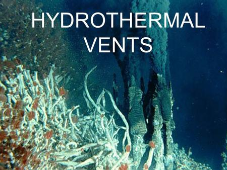 HYDROTHERMAL VENTS.
