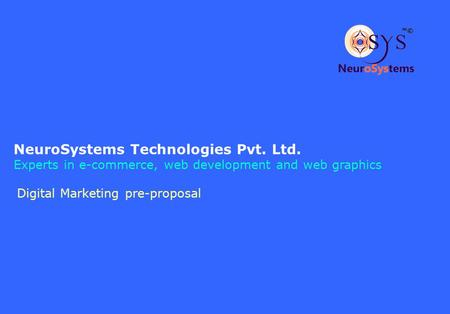 NeuroSystems Technologies Pvt. Ltd. Experts in e-commerce, web development and web graphics Digital Marketing pre-proposal.