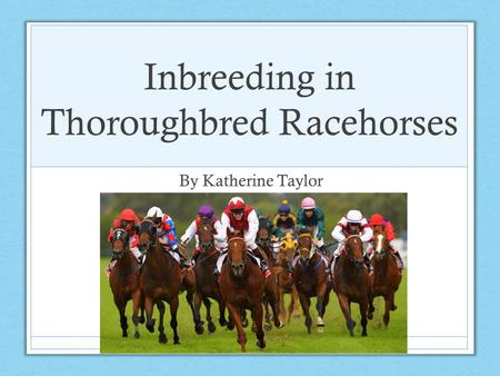 Inbreeding in Thoroughbred Racehorses By Katherine Taylor.