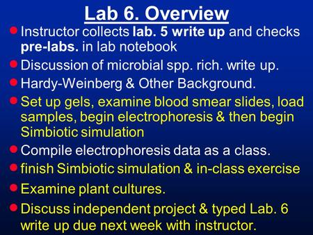 Lab 6. Overview  Instructor collects lab. 5 write up and checks pre-labs. in lab notebook  Discussion of microbial spp. rich. write up.  Hardy-Weinberg.