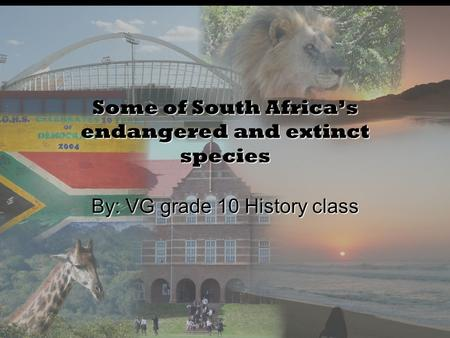 Some of South Africa's endangered and extinct species By: VG grade 10 History class.