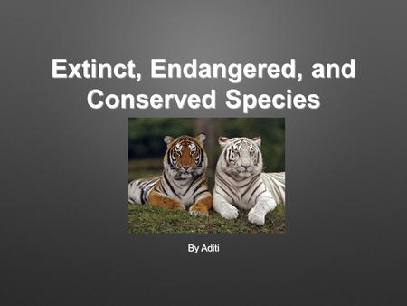 Extinct, Endangered, and Conserved Species By Aditi.