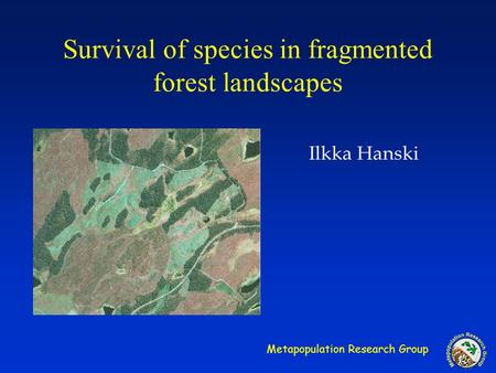 Metapopulation Research Group Survival of species in fragmented forest landscapes Ilkka Hanski.