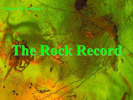 Chapter 21 Section 1 The Rock Record.