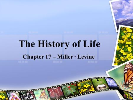 The History of Life Chapter 17 – Miller · Levine.