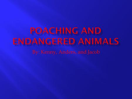 By: Kenny, Anders, and Jacob.  What causes primates to become endangered/extinct yearly?  KP.