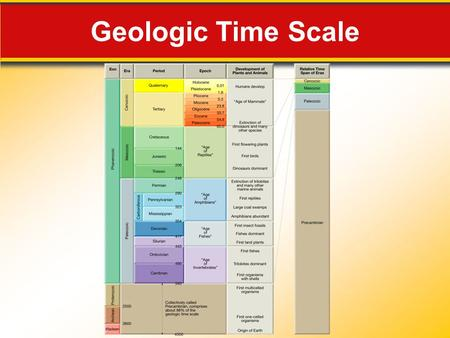 Geologic Time Scale. Mesozoic Era 13.3 Mesozoic Era: Age of Reptiles  Dinosaurs were land-dwelling reptiles that thrived during the Mesozoic era.  Mesozoic.