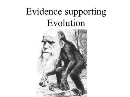 Evidence supporting Evolution.  Six main lines of evidence that supports the theory of evolution 1.Fossil Evidence 2.Homologous Structures 3.Vestigial.