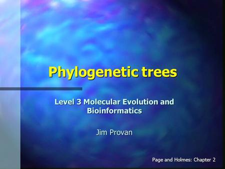 Phylogenetic trees Level 3 Molecular Evolution and Bioinformatics Jim Provan Page and Holmes: Chapter 2.