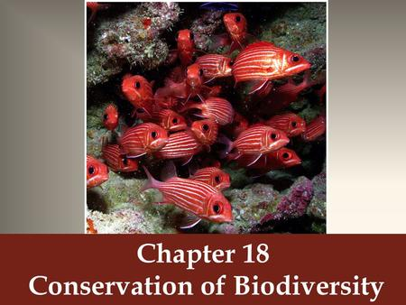 Chapter 18 Conservation of Biodiversity. How do coral reefs form?