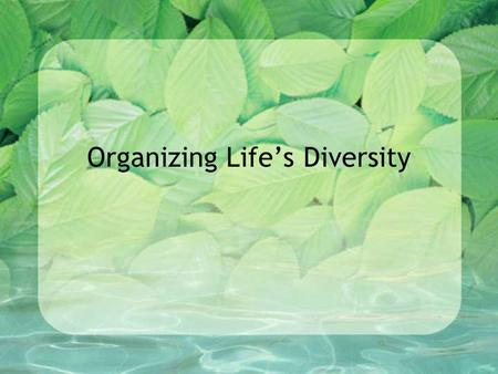 Organizing Life's Diversity. Classification – the grouping of objects or information based on similarities. (ie. organizing your CD collection) Taxonomy.