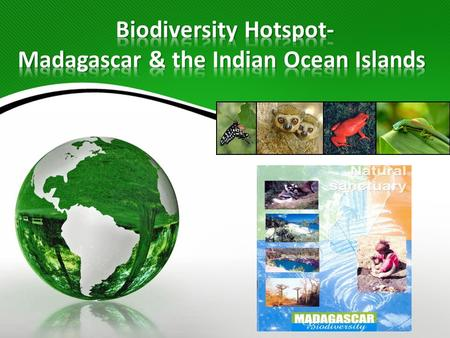 According to Conservation International, a biodiversity hotspot is defined by the following 2 criteria: 1.It must have at least 1,500 species of endemic.