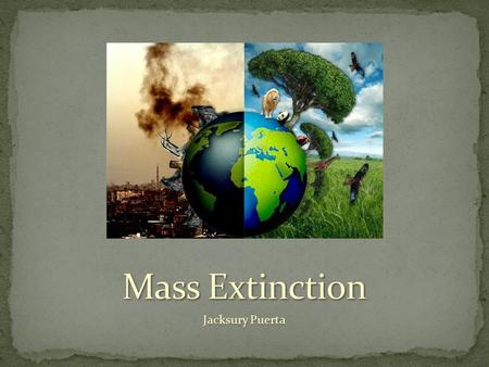 Jacksury Puerta. Extinction is the process by which a species become extinct, no longer existing and living in the world. Extinction is a normal part.
