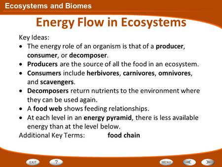 Ecology/Energy in ecosystems