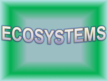 An ecosystem is made up of all the living and nonliving things in a particular area. The organisms in an ecosystem interact with one another as well as.