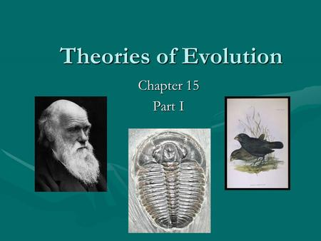 Theories of Evolution Chapter 15 Part I. Definition of Evolution: A heritable change in the characteristics within a population from one generation to.