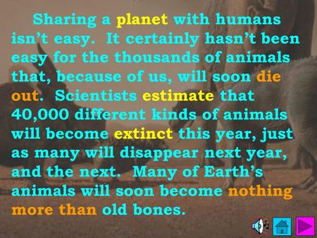 Sharing a planet with humans isn't easy. It certainly hasn't been easy for the thousands of animals that, because of us, will soon die out. Scientists.