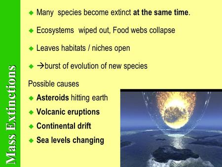 Mass Extinctions MMany species become extinct at the same time. EEcosystems wiped out, Food webs collapse LLeaves habitats / niches open  burst.