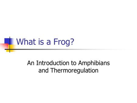What is a Frog? An Introduction to Amphibians and Thermoregulation.