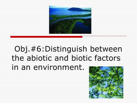 Obj.#6:Distinguish between the abiotic and biotic factors in an environment.