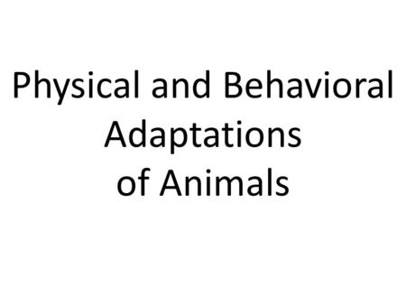 Physical and Behavioral Adaptations of Animals. What are Physical and Behavioral Adaptations? Physical adaptations can be a body structure that an animal.