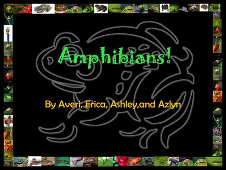 Amphibians! By Averi, Erica, Ashley,and Azlyn. General Characteristics Habitat- Diverse-found in deserts, swamps, lowland tropical rainforests, above.