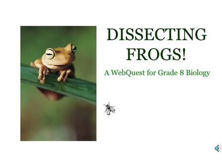 DISSECTING FROGS! A WebQuest for Grade 8 Biology.