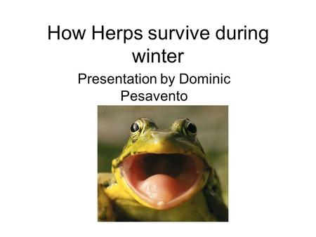 How Herps survive during winter Presentation by Dominic Pesavento.