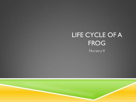 LIFE CYCLE OF A FROG Nursery II. LIFE CYCLE OF A FROG.