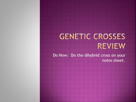 Genetic Crosses Review