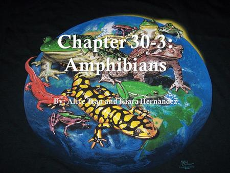 Chapter 30-3: Amphibians By: Alice Tran and Kiara Hernandez.