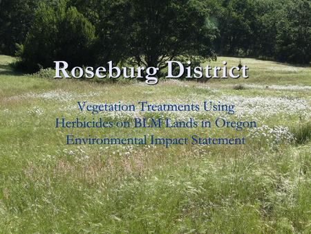 Roseburg District. Noxious Weeds There are 33 noxious weeds documented on District There are 33 noxious weeds documented on District Total acres infested.