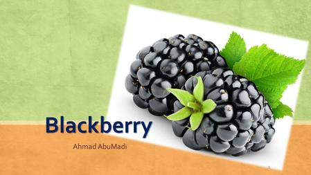 Blackberry Ahmad AbuMadi 1. Scientific classification KingdomPlantae ClassAngiosperms SubclassEudicots OrderRosales FamilyRosaceae GenusRubus speciseR.fruticosus.