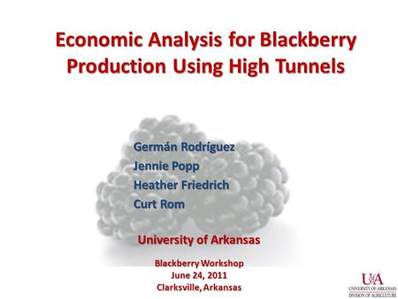 Economic Analysis for Blackberry Production Using High Tunnels Germán Rodríguez Jennie Popp Heather Friedrich Curt Rom Blackberry Workshop June 24, 2011.